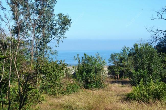 اجاره ویلا باغ ساحل اختصاصی در نزدیکی رامسر
