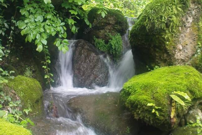 اجاره ویلا جنگلی لب رودخانه
