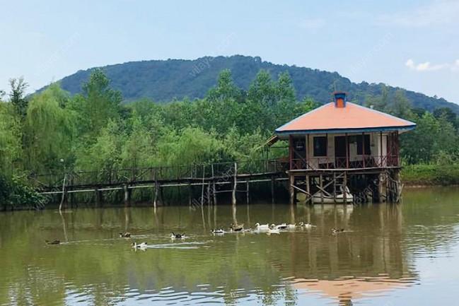 اجاره کلبه داخل دریاچه در رشت