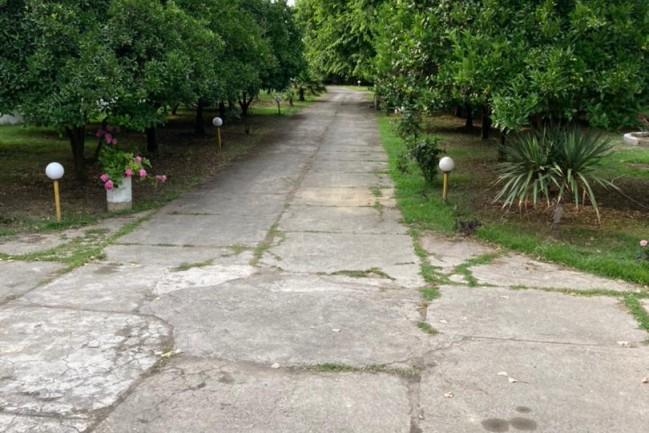 اجاره ویلا باغ استخردار روباز شهرکی