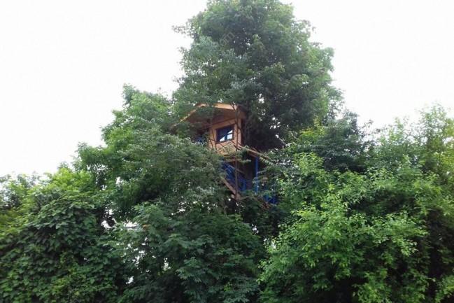 اجاره شبانه کلبه جنگلی متل قو