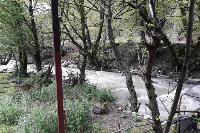 ویلا لب رودخانه داخل جنگل  یک مکان رویای