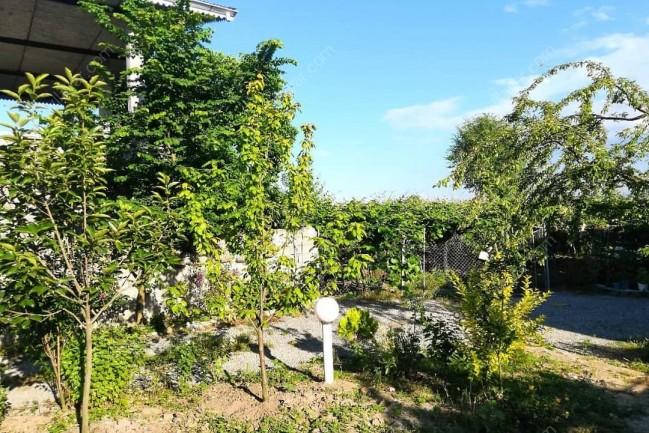 ویلا باغ روستایی نزدیک رودخانه در تالش