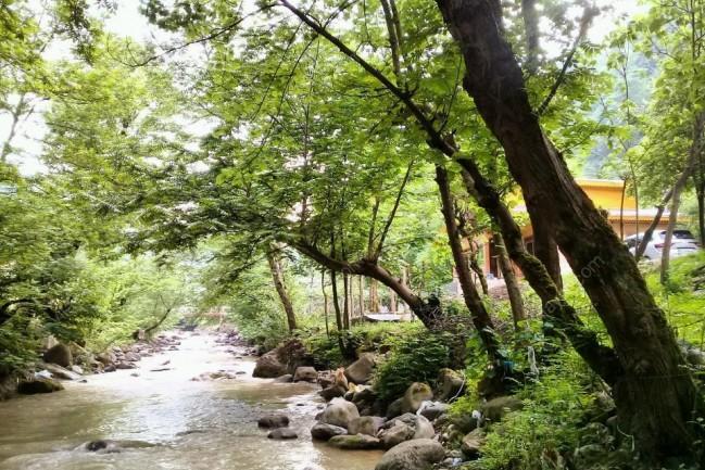 اجاره کلبه چوبی لب رودخانه در اسالم گیلان