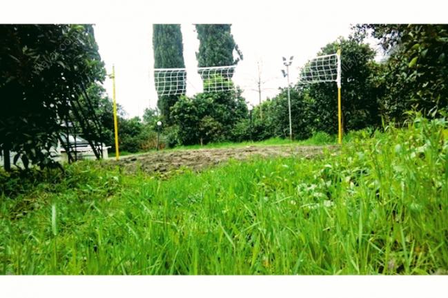 اجاره ویلا استخر دار جنگلی با بیلیارد و زمین والیبال
