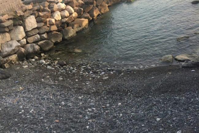 اجاره ویلا استخردار ساحلی در شمال در نوشهر