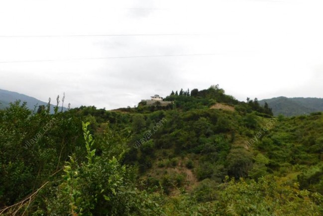 رزرو ویلا جنگلی در شمال