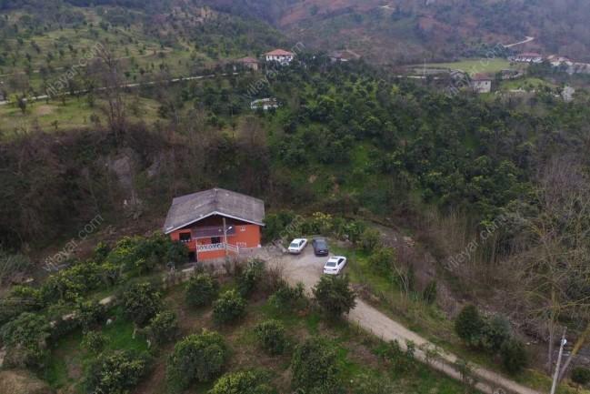 ویلا جنگلی در رامسر مازندران