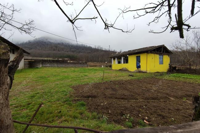 اجاره ویلا خانه روستایی جنگلی در تالش