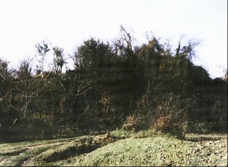 قلعه کول فومن