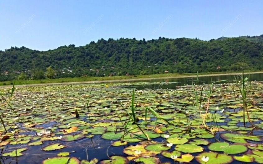 سفری شگفتانگیز به دریاچه کومله