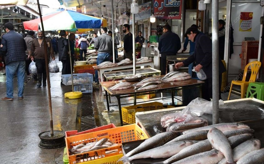 بازار ماهی فروشان فریدونکنار