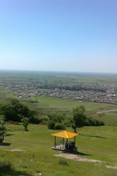 زیتون تپه آزادشهر