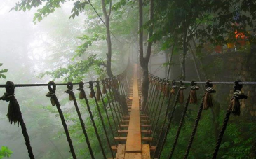 پل معلق نمک آبرود از جاذبه های گردشگری کدام استان می باشد؟