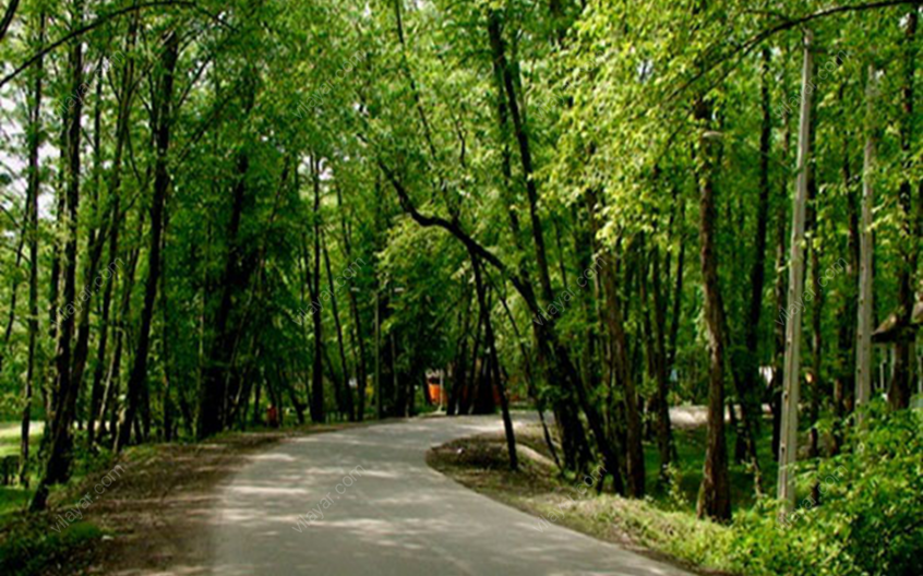 پارک جنگلی کشپل در کدام استان است؟