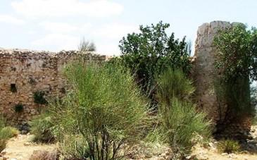 محوطه تاریخی هفت دغنان؛ شهری تاریخی با قدمت 1200 سال