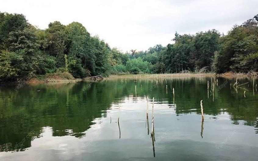تجربه سفر به دریاچه الیمالات و عکس های آن در شهرستان نور