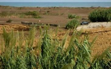 تلاقی جنگل و دریا در روستای گردشگری کرفون بابلسر