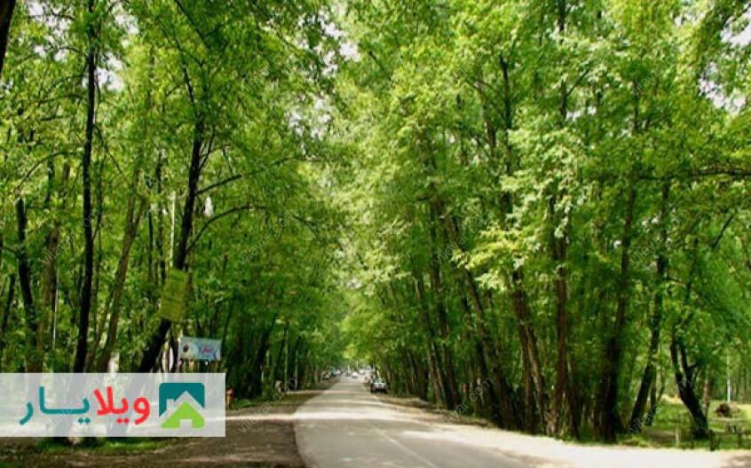جنگل گردی متفاوت با حضور در پارک جنگلی چهار فصله کشپل