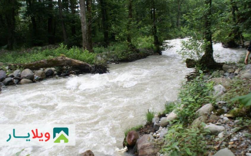 جنگل چالدره پرطراوت ترین پارک جنگلی مازندران در تنکابن