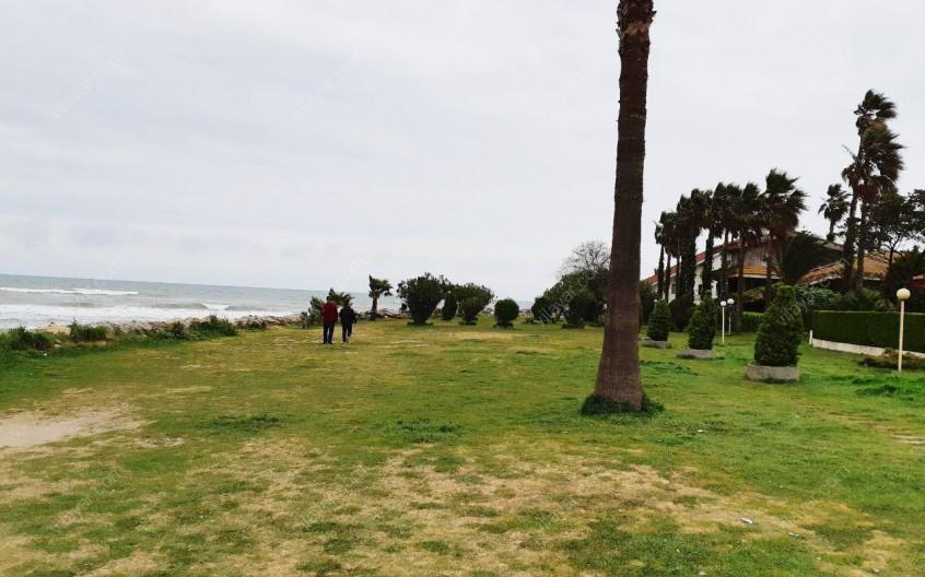 چرا تاجر ها بیشتر از شهرک دریا کنار استقبال می کنند؟