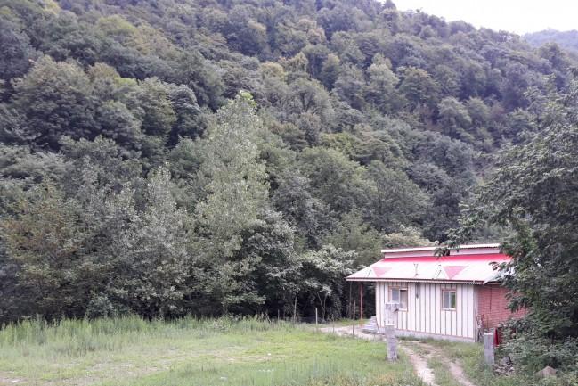 رزرو ویلای جنگلی لبه رودخانه در گیلان